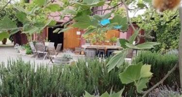 Macquariedale - Hunter Valley Pokolbin Accommodation - Beltana Villas
