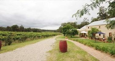 Tintilla Estate - Hunter Valley Pokolbin Accommodation - Beltana Villas