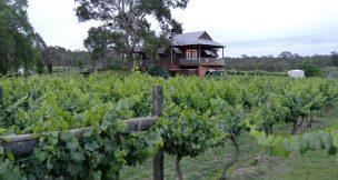 Black Creek Farm - Hunter Valley Activities Hunter Valley - Beltana Villas